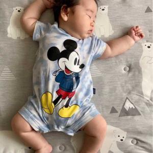 次女の赤ちゃん。生まれて100日おめでとう~w写真共有アプリ「いいね」のウィジットを表示するようにしてみました。