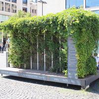フランクフルトの植物に囲まれた休憩スポットで、気候変動を考える