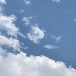 暑くて青空でセミも鳴いてますが、、