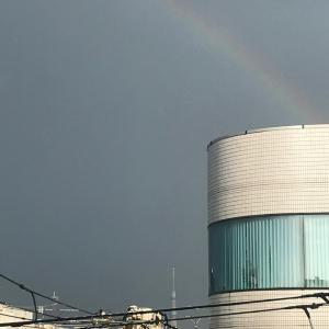 虹とスカイツリー(^。^)