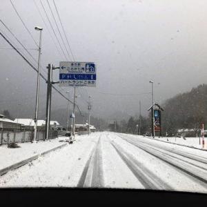 ふ、冬が来ました!