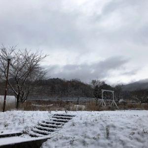 本日の小坂町は雪、降ってます・・・
