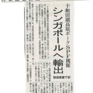 秋田県産豚肉として初めて!! 【桃豚】がシンガポールへ輸出され、今年から現地百貨店や飲食店で販売が始まる記事が掲載されました!その3