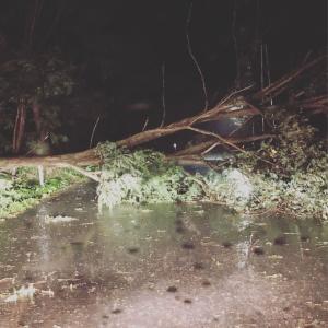 お住まい地域は暴風雨、大丈夫でしたか?