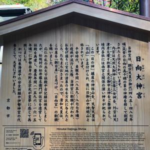日向大神宮にお参りしてきました^^