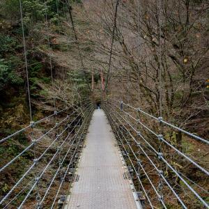 冬枯れ間近の原不動滝と裏道の黄葉