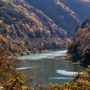 瀬田川から宇治川へ、そしてそば食べて帰ろう