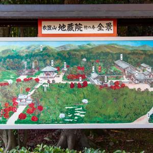 紅葉の地蔵院と善峯寺