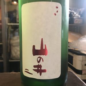 福島県 会津酒造 山の井 50 あさひ 純米大吟醸!