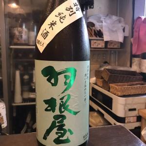 富山県 富美菊酒造 羽根屋 特別純米瓶燗火入!