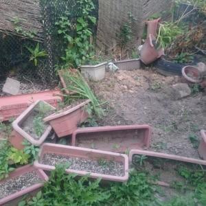 イノシシ出没で土地が掘られまくる被害にあいました。