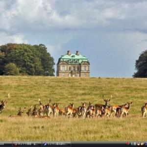 シェラン島のパル・フォルス式狩猟の景観 - デンマーク 世界遺産