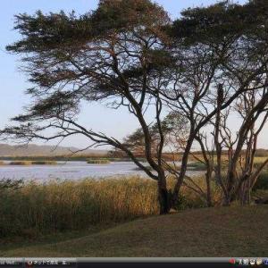 イシマンガリソ湿地公園 -南アフリカ 世界遺産 写真・壁紙集