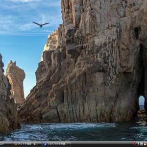 カリフォルニア湾の島嶼および保護地区群 - メキシコ 世界遺産