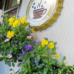 ★素敵なパン屋さん♡お花いっぱい‼️