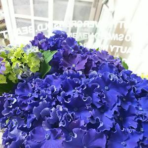 ★我が家のニューフェイス♡カーリースパークル