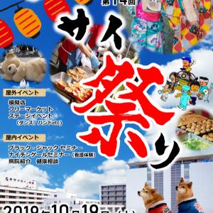 """明日の """"エキサイ祭り"""""""
