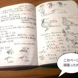 試験勉強がんばってます!