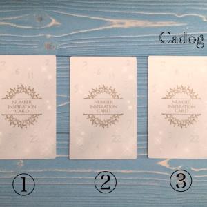 【アドバイスが欲しい時の1枚!本日のカードリーディング】ナンバーインスピレーションカード