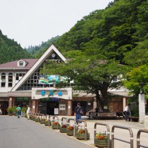 高尾山 稲荷山コースを登った。