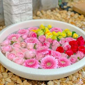 【イベント】ご来場特典「お花すくい」について