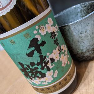 千本桜といえばミクさんの楽曲が有名ですけど、これは焼酎なんです。柳田酒造「芋焼酎 母智丘 千本桜」