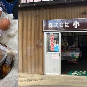 富士吉田市で見つけたたまごのお店「株式会社小林」さんの煮卵。