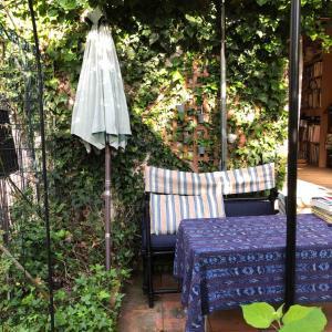 今日の庭 ベンチ設置