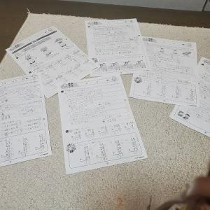 しちだ(七田)3年生算数のプリントは、発達の子が復習に使うのに、とても良いね~。(中学生)
