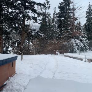 凍りそう~