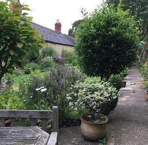 ガーデニング好きの庭