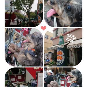 横浜でお散歩(^-^)/