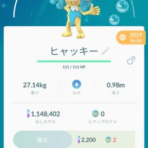 Pokemon GO ヒヤッキー と 色違いケムッソ