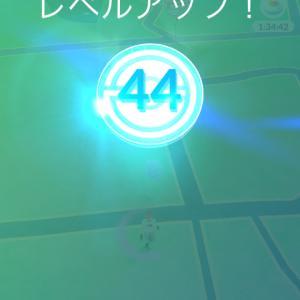 ポケモンGo(レベル40) と 朝ラー