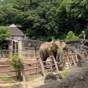 タマコちゃん、初めての多摩動物公園の巻
