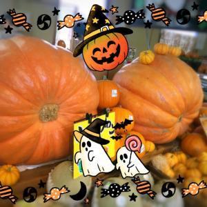 【でかぼちゃ。】