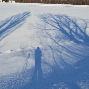 スキーハイク・・近場で自然を楽しむ・・