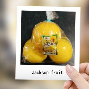 お初なくだもの『ジャクソンフルーツ』。
