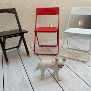 届いた!楽天スーパーセール購入品❤️お洒落な折りたたみ椅子