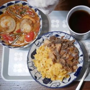 #オトナのそぼろ丼 etc. 晩ごはんの残飯から出来たものすごくおいしい昼ごはん