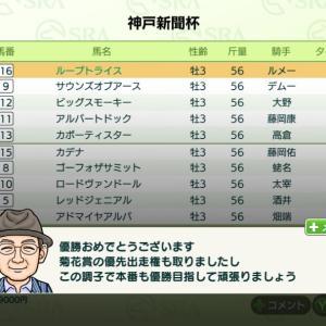 ダービースタリオン 神戸新聞杯 天皇賞(春) ジャパンカップ