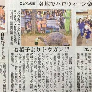琉球新報にて「沖縄こどもの国ハロウィンカーニバル2019!」の事が掲載!