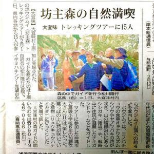 琉球新報にて「大宜味村ボウジムイ トレッキングツアー!」の記事が掲載!