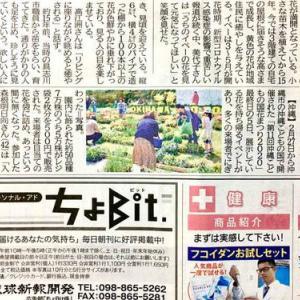 琉球新報にて「沖縄こどもの国 花まつり最終日!」の記事が掲載!