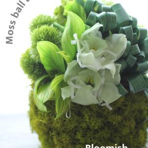 Bloomishインストラクターコースレッスン:癒し系♪モス玉アレンジ/大阪高槻校ルクプリエ
