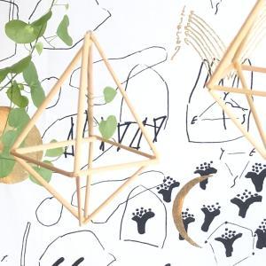 有機無農薬栽培の新米とヒンメリ