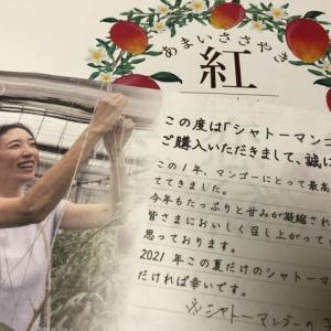 八田京子さんのマンゴー