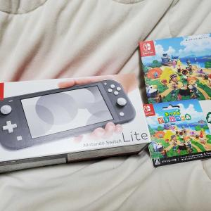 Nintendo Switch Liteを買いました