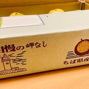 いすみの梨♡
