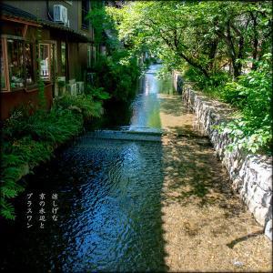 京の水辺と